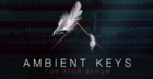Ambient Keys for Xfer Serum