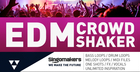 EDM Crowd Shaker