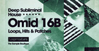 Omid 16B - Deep Subliminal House