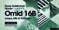 Omid 16b   deep subliminal house music  perc   top loops