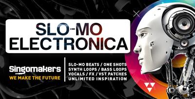 Slo-Mo Electronica