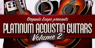 Platinum acoustic guitars 2  guitar session players  acoustic guitar riffs  rectangle