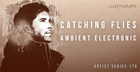 Catching Flies - Ambient Electronic