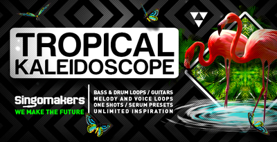 Singomakers tropical kaleidoscope bass drum loops guitars melody voice loops one shots serum presets unlimited inspiration 1000 512