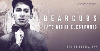 Bearcubs - Late Night Electronic