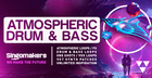 Atmospheric Drum & Bass
