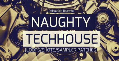 Naughty Tech House