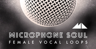 Microphone soul banner