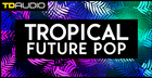 TD Audio - Tropical Future Pop