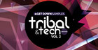 Tribal & Tech Grooves Volume 2