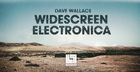 Dave Wallace Widescreen Electronica