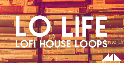 Lo life banner