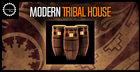 Modern Tribal House