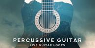 Percussive Guitar 1000 X 512