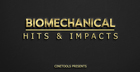 Biomechanical Hits & Impacts