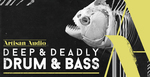 Royalty free drum   bass samples  dubby organic chords and drifting pads  dnb drum and percussion  rectangle