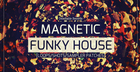 Magnetic Funky House