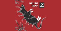 Iq samples  neuro trap1000 512