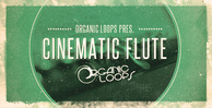 Royalty free flute samples  cinematic flute loops  film scores  silver flute sounds  rectangle