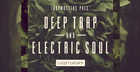 Deep Trap & Electric Soul
