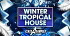 Winter Tropical House