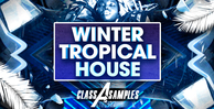 Cas winter tropical house 1000 512