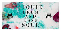 Liquid drum and bass soul sounds royalty free 512 web