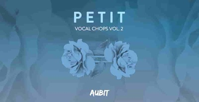 Aubit petit vocal chops vol2 512 vocal loops