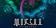 Moksha production master psytrance 512 psy loops
