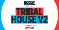 Royalty free tribal house samples  house drum and synth loops  deep percussion grooves rectangle