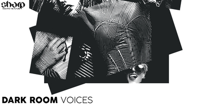 Sharp samples dark room voices 512 web