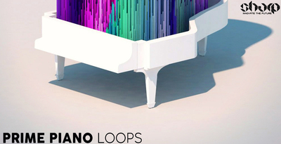 Sharp   prime piano loops 512 web
