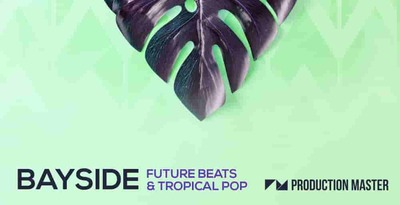 Bayside future 512 production master tropical loops