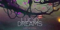 Lucid dreams production master 512 lofi loops