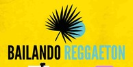 Bailando reggaeton production master reggaeton loops 512