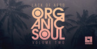 Lack Of Afro Presents Organic Soul Vol. 2