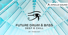 Future Drum N Bass