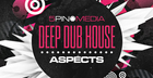Deep Dub House Aspects