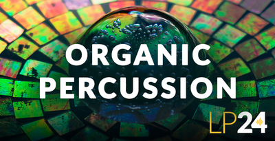 Lp24 organic percussion sounds samples royalty free 512 web
