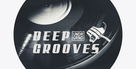 Deep grooves undrgrnd sounds samples loopcloud ready 512 web