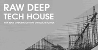 Raw deep tech house  gajh1
