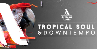 Royalty free downtempo samples  reggaeton drum loops  tropical pitched vocal loops  downtempo synth and bass loops 512