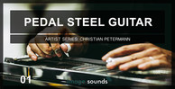 Pedal steel guitar 1 banner