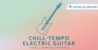 Chill-Tempo Electric Guitar