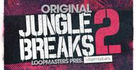 Royalty Free Jungle Break Samples  Drum Loops For Jungle Music  Original Jungle Breaks  Old School Jungle  Halftime Drum Loops 512