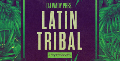 Royalty free tribal house samples  tech house basslines  laitin instrument loops  salsa piano  latin percussion and brass loops   rectangle