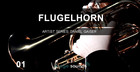Image Sound Presents - Flugel Horn 1