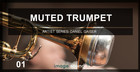 Image Sound Presents - Muted Trumpet 1
