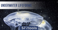St ul underwater lifeforms 1000x512 web