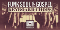Looptone funk soul   gospel keyboard chops 1000 x 512 web